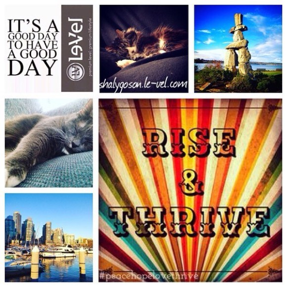 Rise & Thrive Collage